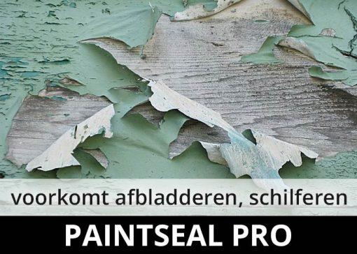 Paintseal Pro - voorkomt afbladderen schilferen van verf en beits