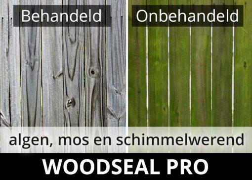 Woodseal Pro impregneermiddel - hout algen mos en schimmelwerend